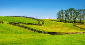Things to Consider When Purchasing Equine Property