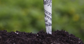 Timberland Investments and the Value of Dirt
